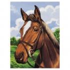Canevas Complet Portrait cheval