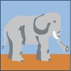 Canevas Elephant