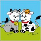 Canevas Couple Vache