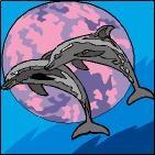 Canevas Couple dauphin