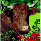 Canevas Complet Vache