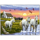 Canevas Complet Paysage chevaux blanc