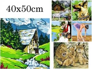 Canevas 40x50cm