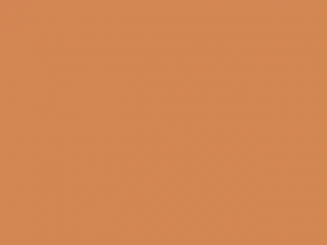 Ruban satin 6mm copper