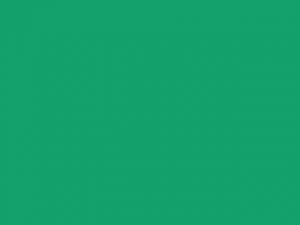 Ruban satin 6mm emerald