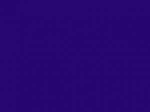 Ruban satin 10mm évêque (violet foncé)