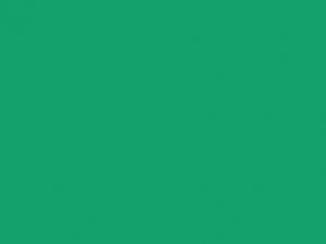 Ruban satin 16mm emerald