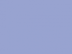 Ruban satin 25mm iris
