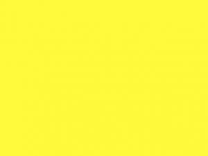 Ruban satin 40mm jaune