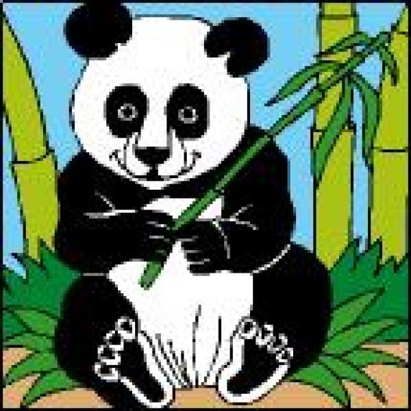 Canevas Panda